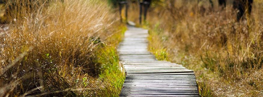Damit es mir möglichst lange gut geht: Alles über Reha und Kur bei Multipler Sklerose