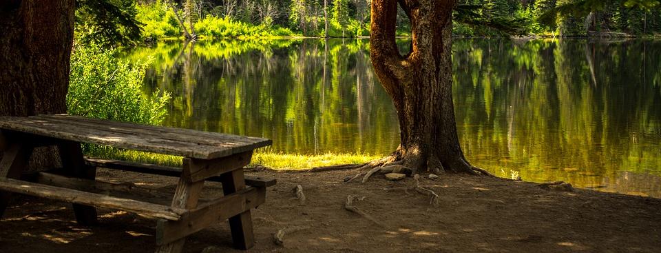 schattiger Platz unter Bäumen am Seeufer
