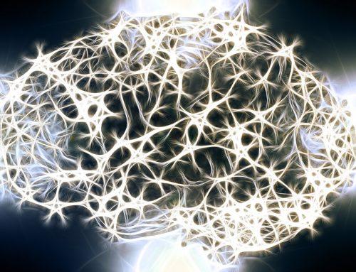 Verbindung zwischen Darmflora und Multipler Sklerose