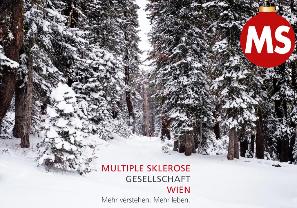 Weihnachtswünsche der MS-Gesellschaft Wien: Schneelandschaft
