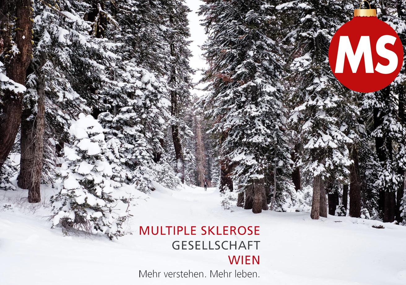 Weihnachtswünsche der MS-Gesellschaft Wien