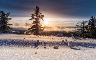 Schneelandschaft, Credit: Unsplash