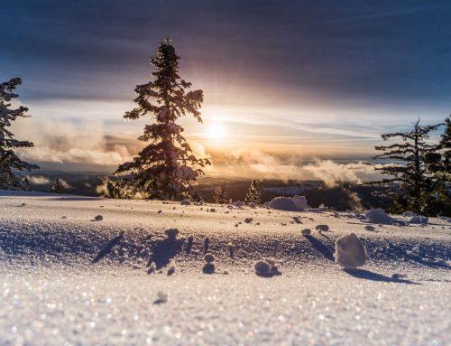 Skifahren mit Multipler Sklerose