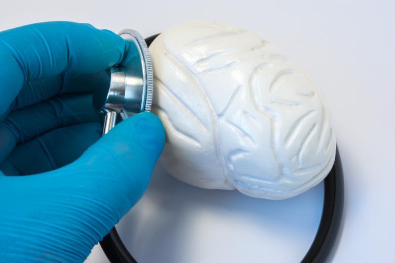 Symbolbild Gehirn: Gehirn aus Kunststoff wird mit Stethoskop untersucht, Credit: Ivan Shidlovski