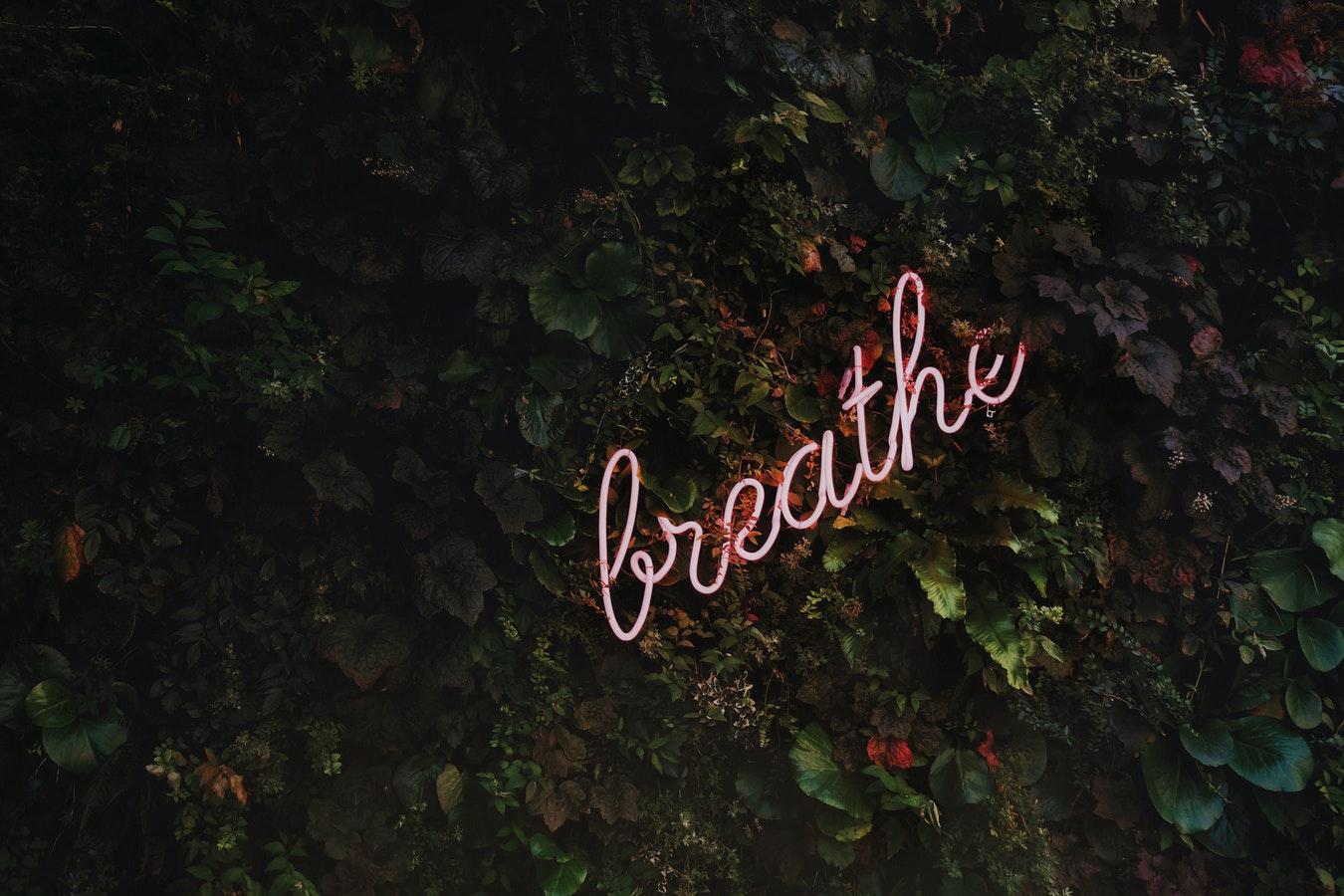 Meditation, Credit: Tim Goedhart