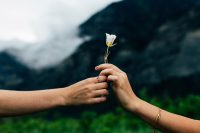 Frau schenkt anderer Frau eine weiße Blume, Credit: Evan Kirby, Unsplash