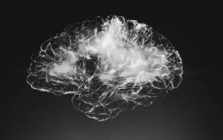 Gehirn, Foto: Alina Grubnyak, Unsplash