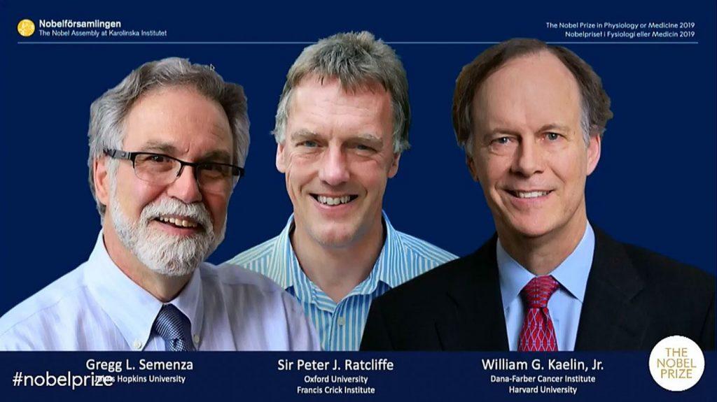 Die Preisträger 2019 von links: Gregg L. Semenza, Peter J. Ratcliffe und William G. Kaelin Jr.