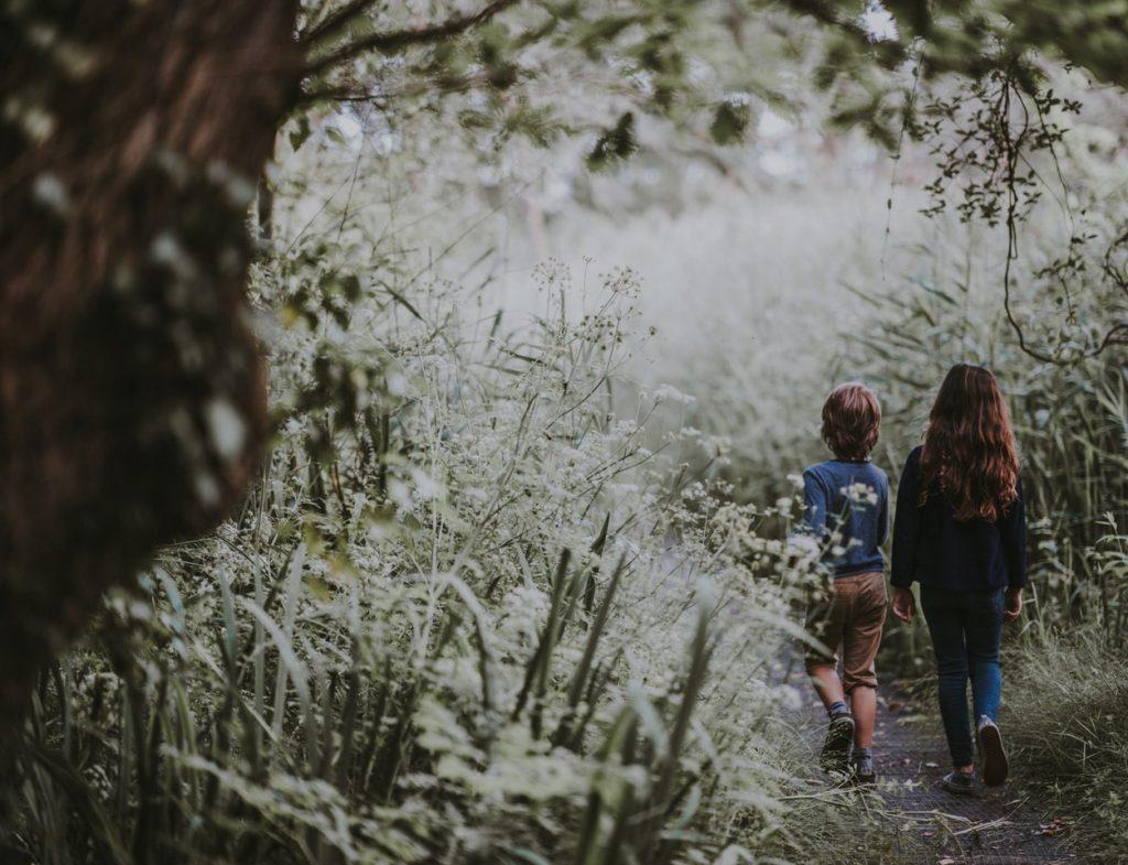 Kinder wandern durch den Wald, von hinten fotografiert, Credit: Annie Spratt
