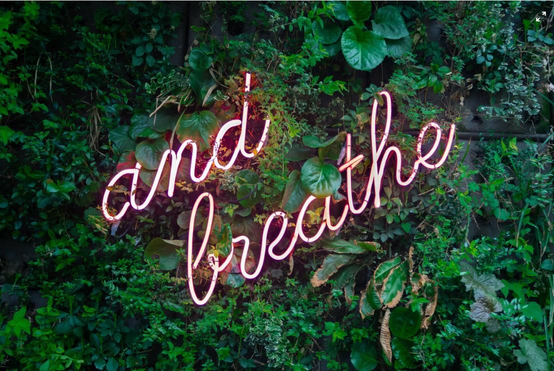 """Symbolbild Entspannung: Gebüsch mit Neon-Schild """"And Breathe"""", Foto: Max van den Oetelaar"""