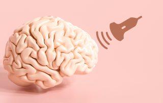 Symboldbild Nervenzell-Stimulation mit Ultraschall: Gehirn und Ultraschallwellen. Credit: Canva