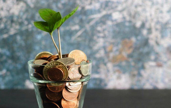 Aus einem Glöas voll Münzen wächst eine Pflanze, Visual Stories || Micheile on Unsplash