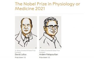 The Nobel Prize in Physiology or Medicine 2021: David Julius and Ardem Patapoutian. © Nobel Prize Outreach